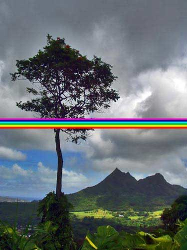 rainbow1-1245157