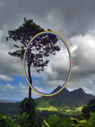 rainbow2-7184602