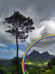 rainbow3-7410347